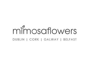 Mimosa Flowers - 15% off*